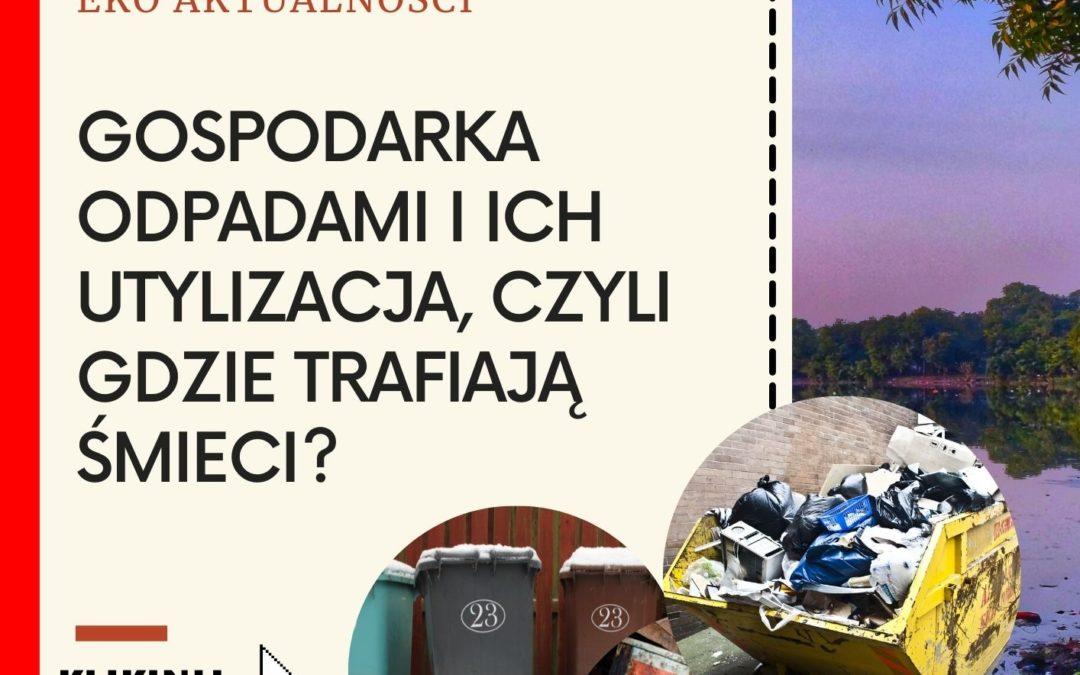 Gospodarka odpadami i ich utylizacja, czyli gdzie trafiają śmieci?